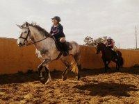 家人正在学习骑马马术类