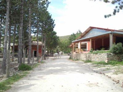 Campamento Naturaleza y Caballos