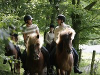 Enjoy an equestrian excursion in Arcos de la Frontera