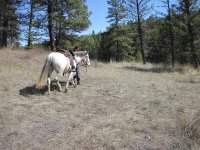 Horseback riding through nature in Arcos de la Frontera