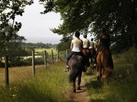 Come and ride on horseback to Arcos de la Frontera