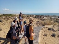 Visiting the dunes of Doñana
