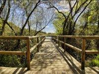 Recorriendo Doñana