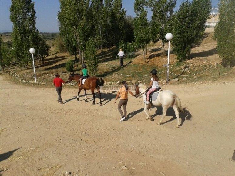 Salidas a caballo