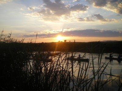 Ruta en canoa doble por Tablas de Daimiel 2 horas