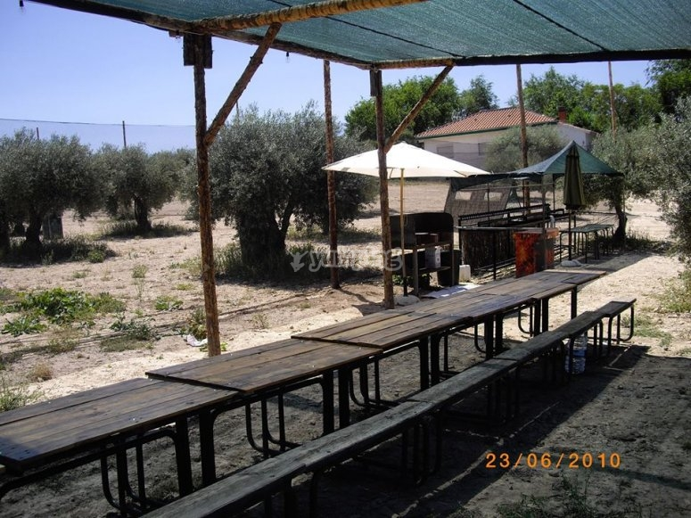 Tables for picnic