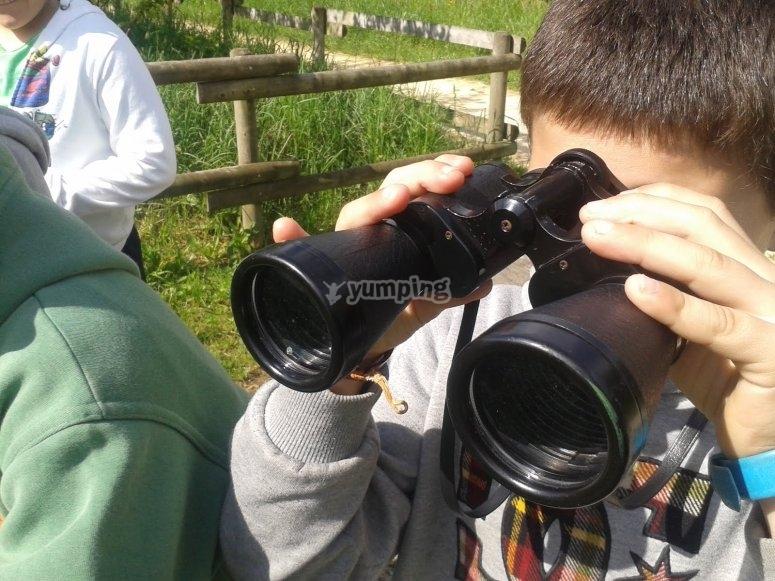 透过望远镜