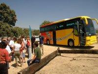 Fletamos autobuses