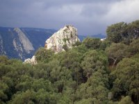 洛斯阿尔科诺卡莱斯山脉