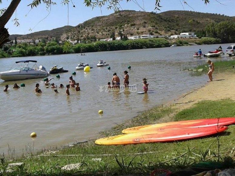 Tablas de paddle surf junto al rio