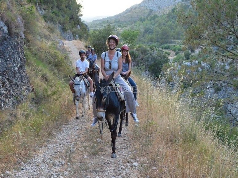 Ruta en burros y mulos
