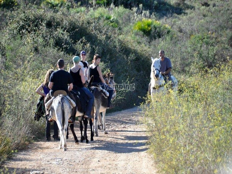 Grupo en burro con guia profesional