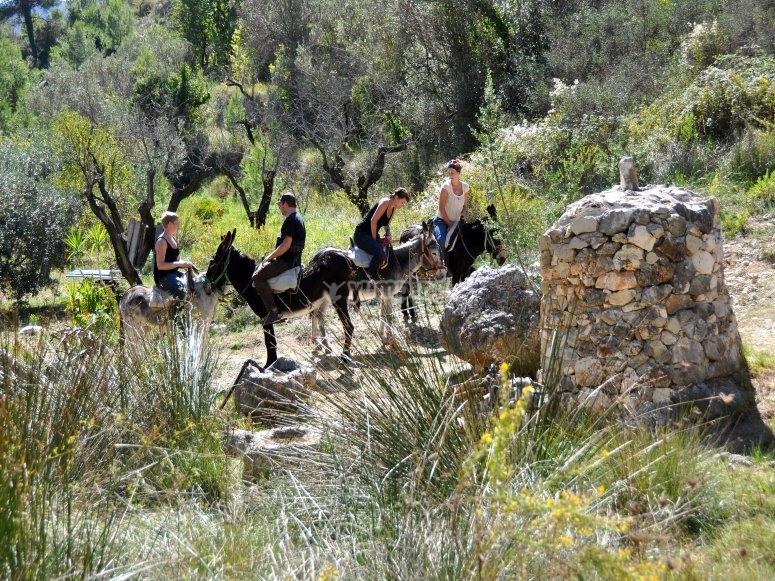 Participantes de la ruta en burro