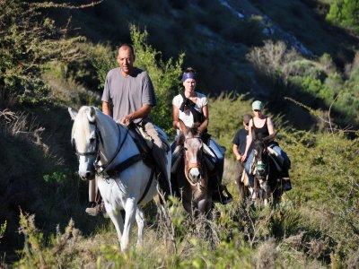 乘坐Vall de Ebo的驴和骡子1.5小时