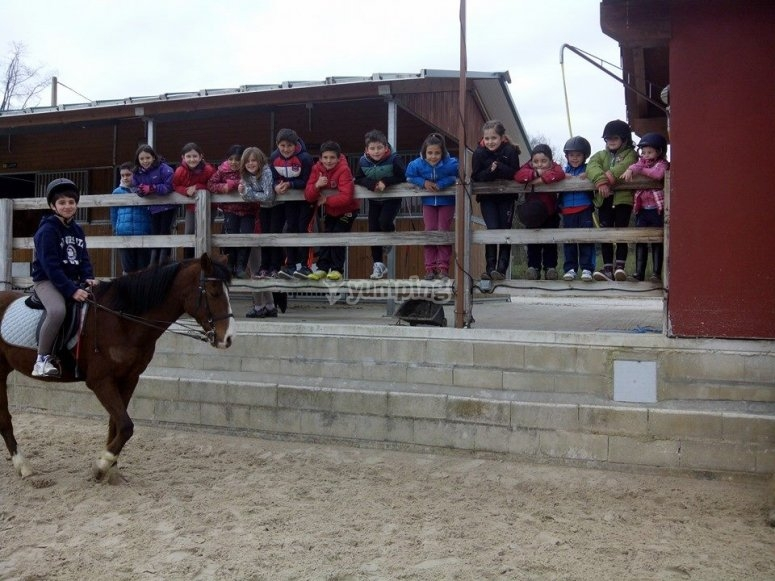 Students of the horse riding camp