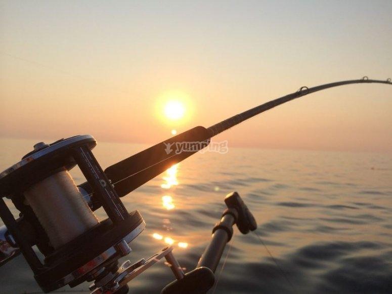 Llevate tu material de pesca
