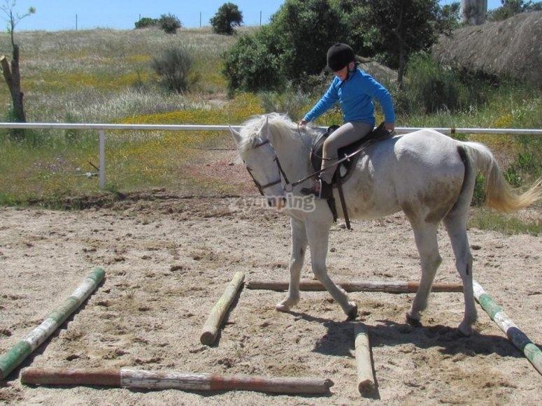 Aprendiendo a llevar al caballo