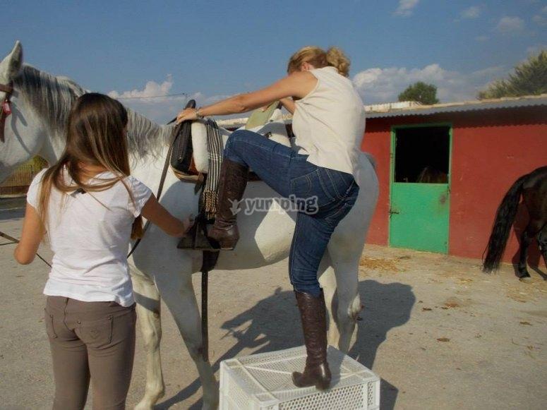 Subiendo al caballo