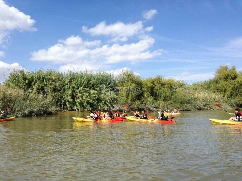 皮艇皮艇组在瓜迪亚纳