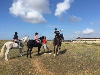 Ruta a caballo para grupos en Dos Hermanas