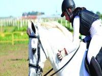 Clase de equitación en Dos Hermanas bono mensual