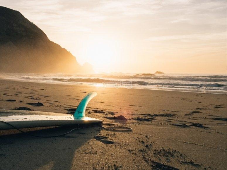Tabla de surf en la orilla