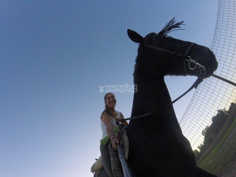 Nuestros equinos
