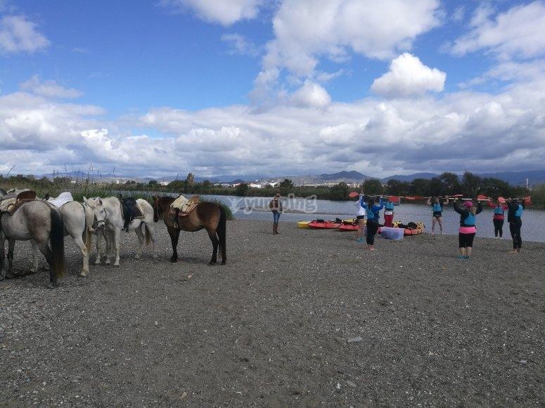 Cielo, caballos y playa