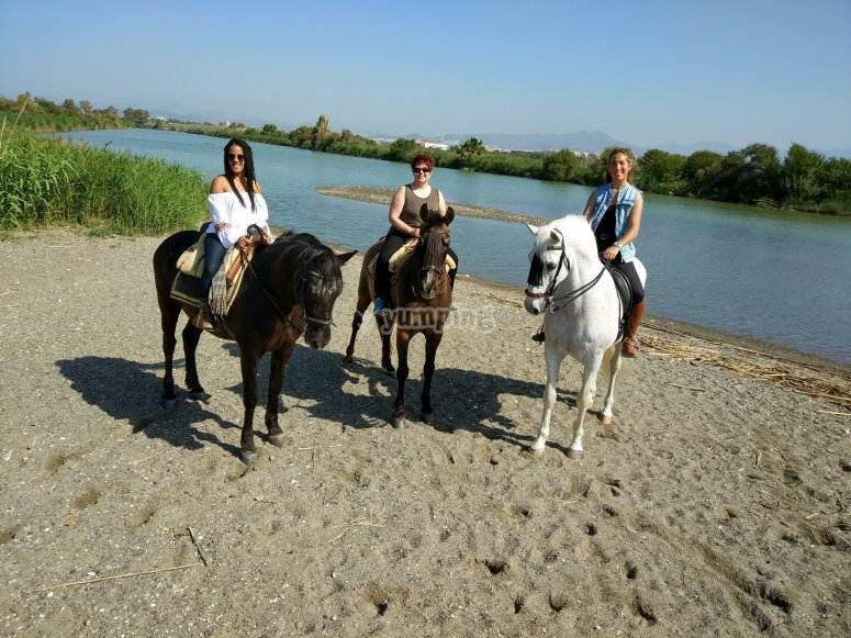 Horse riding in Málaga