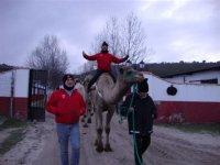 de ruta en camello