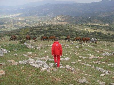 Visita da Granada a Yeguada in Algarinejo, 4 ore