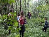 Forest Mindfulness senderismo y relajación Galicia
