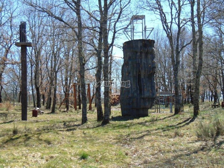 Instalaciones en el bosque