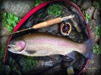 Instrumentos de pesca