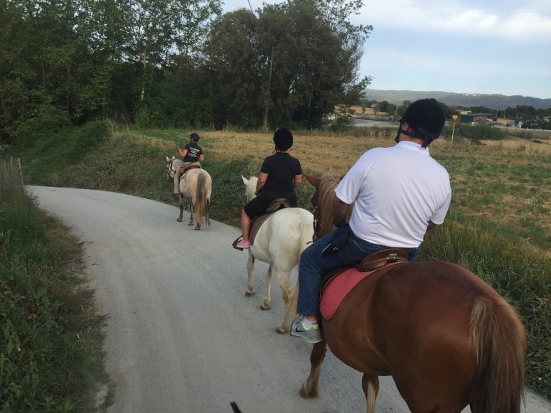 rutas-a-caballo_de_frances_1470718938.6534.jpeg