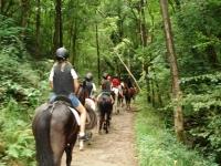 在Sastarrain骑马和骑马课1h