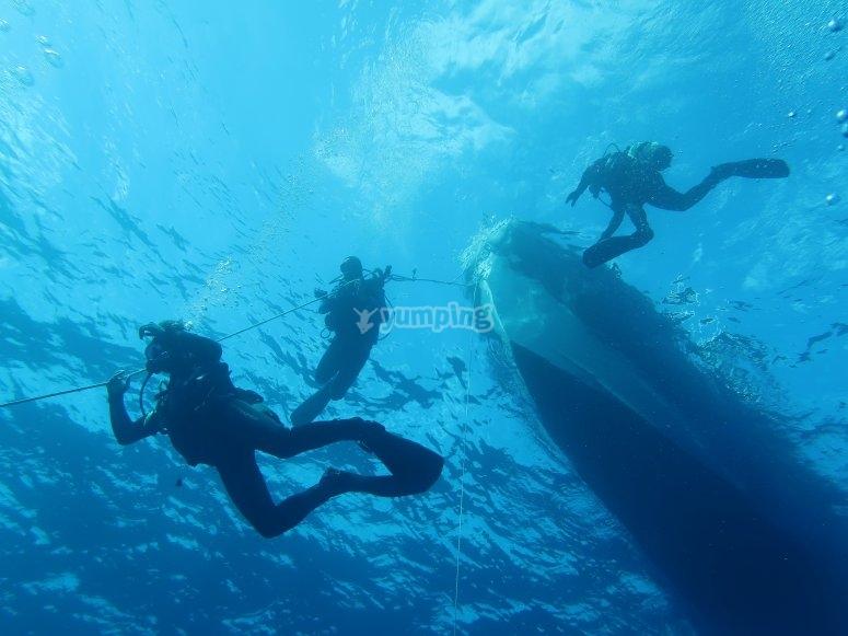 在福门特拉岛潜水2次潜水