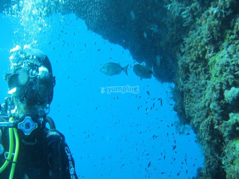 在巴利阿里海底探险