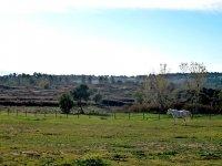 Landscapes of Girona