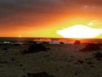 Surfari Fuerteventura