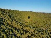 森林中气球的反射