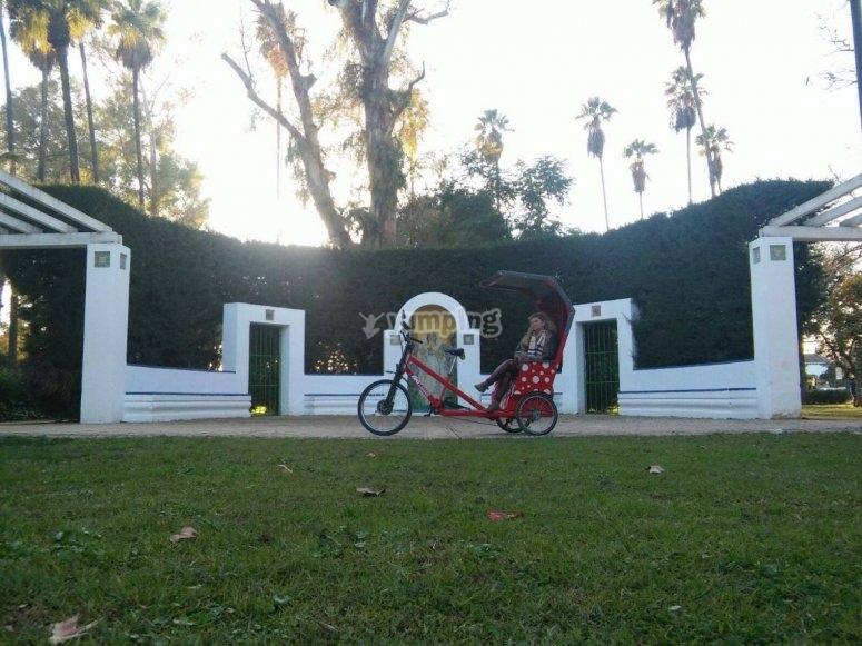 Triciclo en el jardin