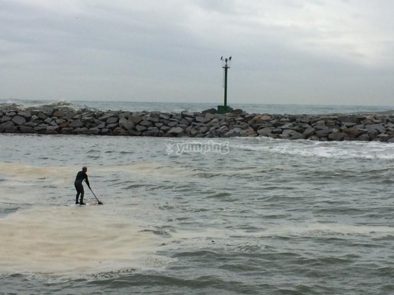 划桨划桨无划风