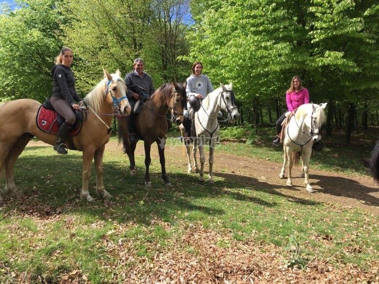 Entorno natural a caballo en Bilbao