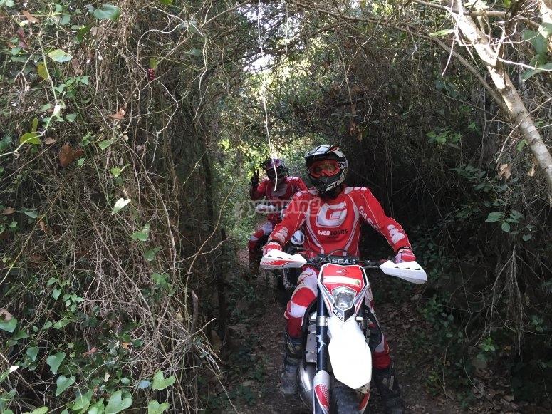 Enduro through the woods