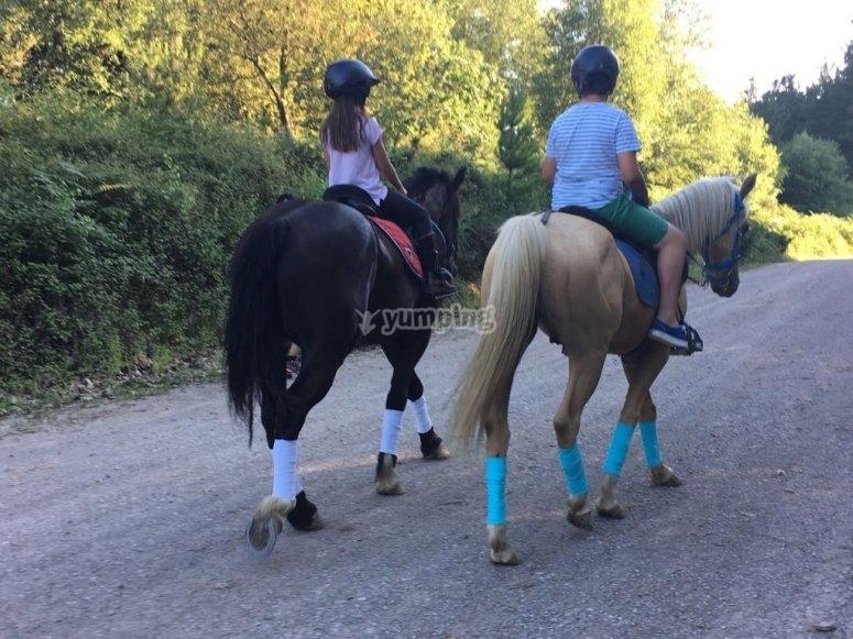 Passeggiate a cavallo attraverso il campo