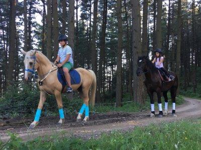 Contatto con cavallo a Bilbao per bambini
