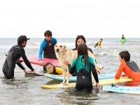 Alumnos de surf acariciando al perro