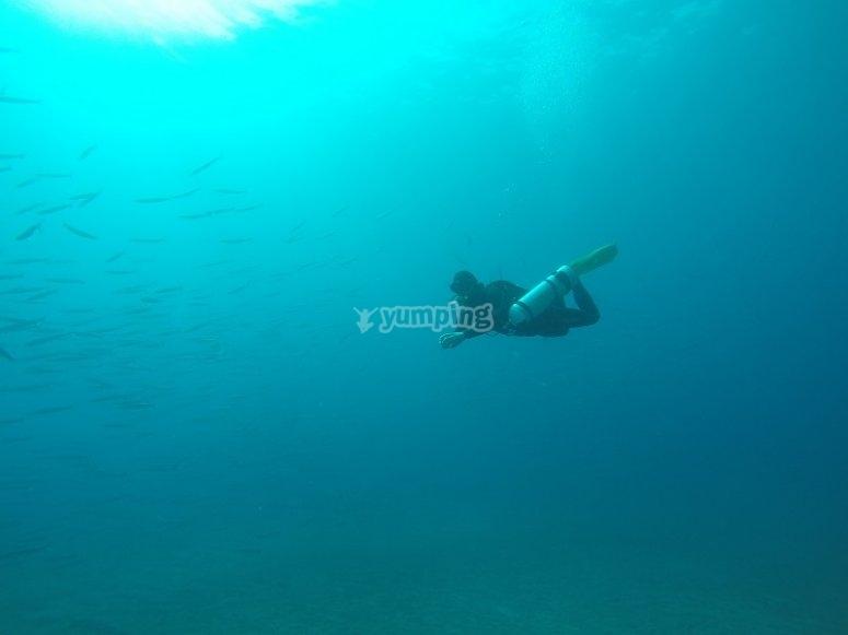 Buceando en la inmensidad azul
