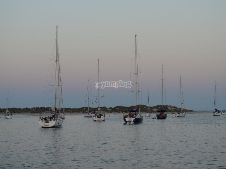 Varios barcos en la costa
